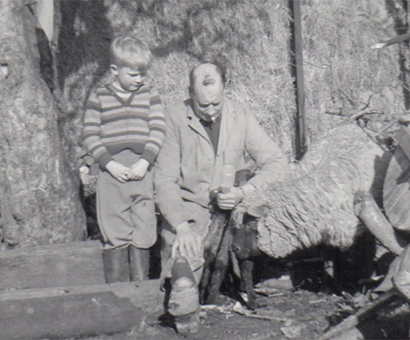 David feeding pet lamb with father