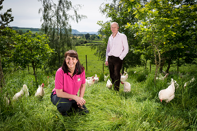 David and Helen Brass Poultry